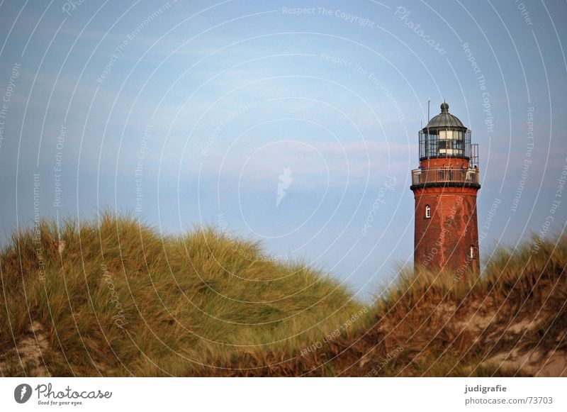Leuchtturm Himmel Meer Strand Ferien & Urlaub & Reisen Erholung Gras See Sand Landschaft Luft Küste Turm Stranddüne Ostsee Navigation