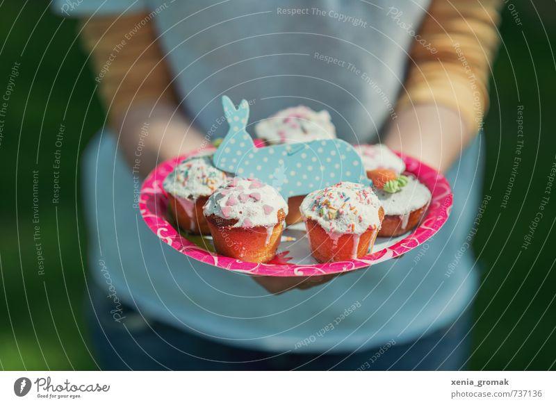 blauer Hase Lebensmittel Kuchen Süßwaren Ernährung Kaffeetrinken Büffet Brunch Festessen Picknick Bioprodukte Vegetarische Ernährung Fingerfood Teller Lifestyle