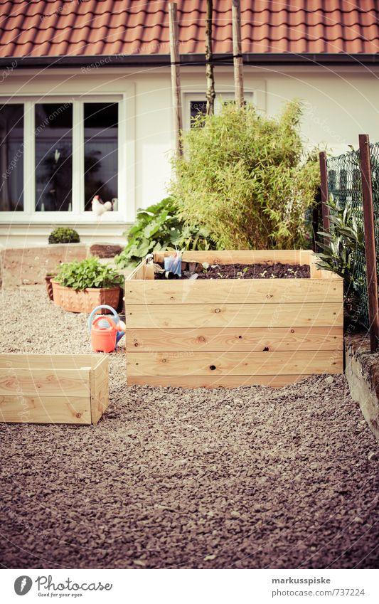hochbeet- urban gardening Stadt Pflanze Freude Stil Glück Garten Lebensmittel Wohnung Lifestyle Häusliches Leben Design Frucht Gemüse Kräuter & Gewürze