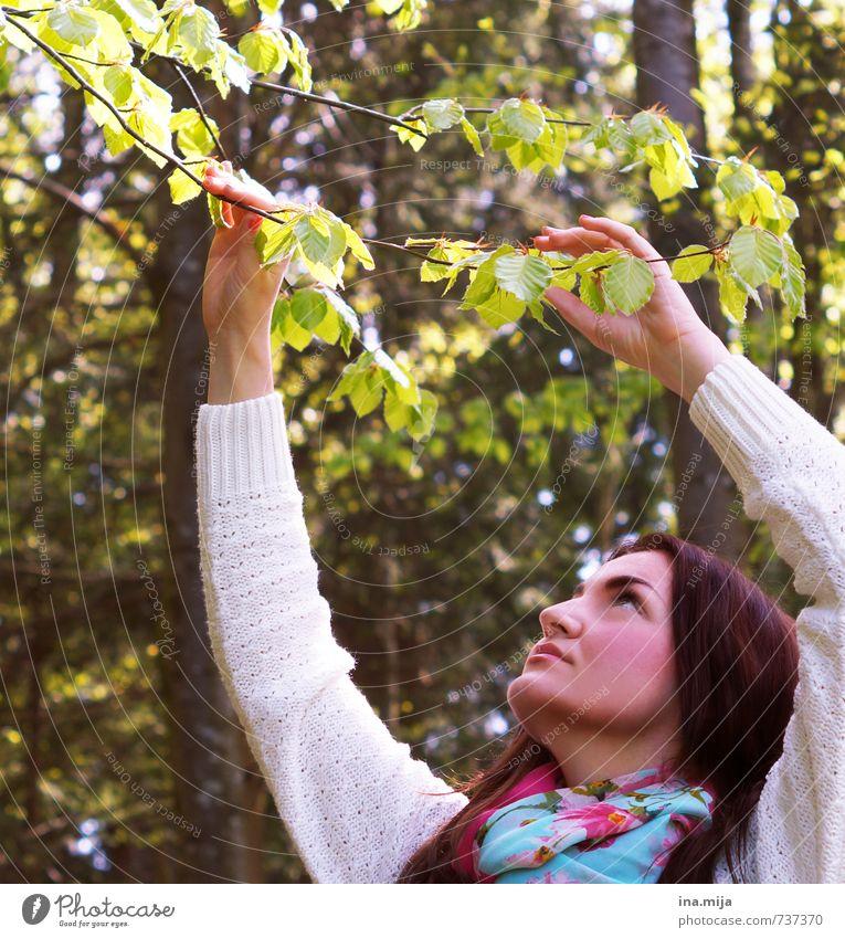 kannst du den frühling fühlen? Mensch Frau Natur Jugendliche Pflanze Baum Erholung Junge Frau Landschaft ruhig Blatt 18-30 Jahre Wald Erwachsene Umwelt Wärme