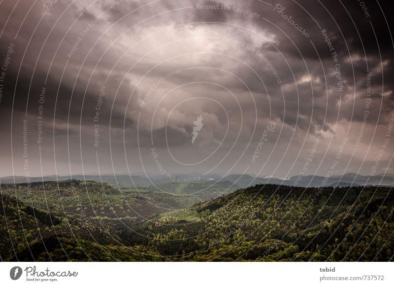 Schlimmes Wetter No. 2 Himmel Natur grün Pflanze Einsamkeit Landschaft Wolken Ferne dunkel Wald Berge u. Gebirge grau Freiheit Horizont Klima bedrohlich