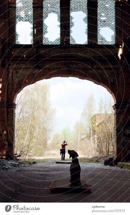 HALLE/S TOUR | Alles im Blick Hund Mensch Natur Mann Stadt Tier Erwachsene Architektur Freundschaft sitzen 45-60 Jahre beobachten Kommunizieren Kreativität