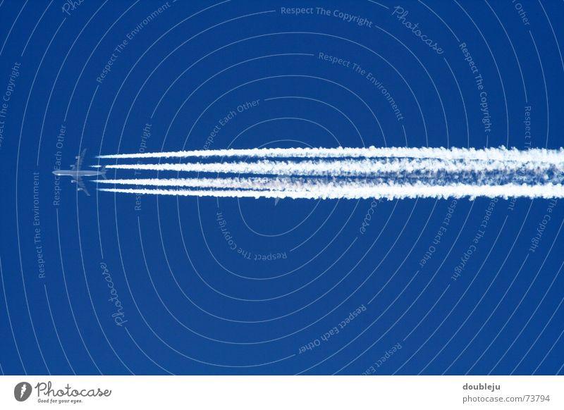 we flying high Himmel blau Ferne Flugzeug Niveau Schönes Wetter Triebwerke Kondensstreifen