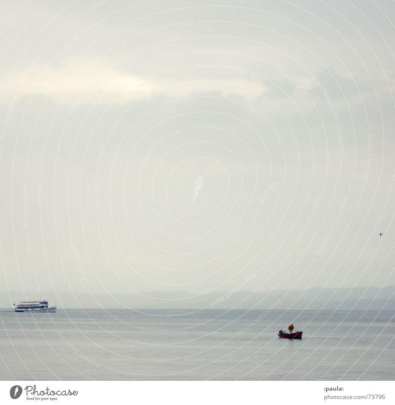 Gardasee Idylle Wasser Himmel ruhig grau Vogel Küste Horizont Italien Möwe Fähre Fischerboot