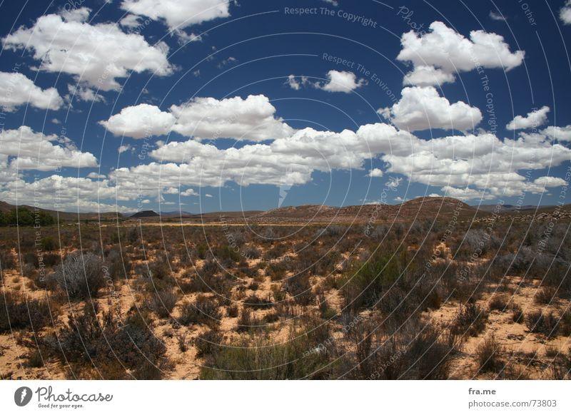 cloudily Landschaft Himmel Wolken Horizont trocken Afrika Steppe aquilia-park gamereservation sky dröge buschwerk Farbfoto