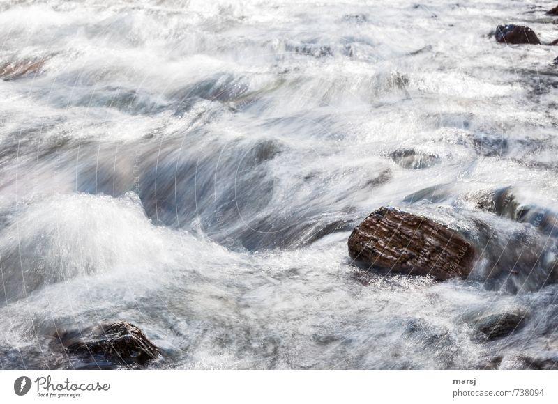 fließend Ausflug Wellen Wassersport Natur Frühling Sommer Herbst Flussufer Bach Stein rennen Bewegung authentisch Flüssigkeit nass natürlich Energie
