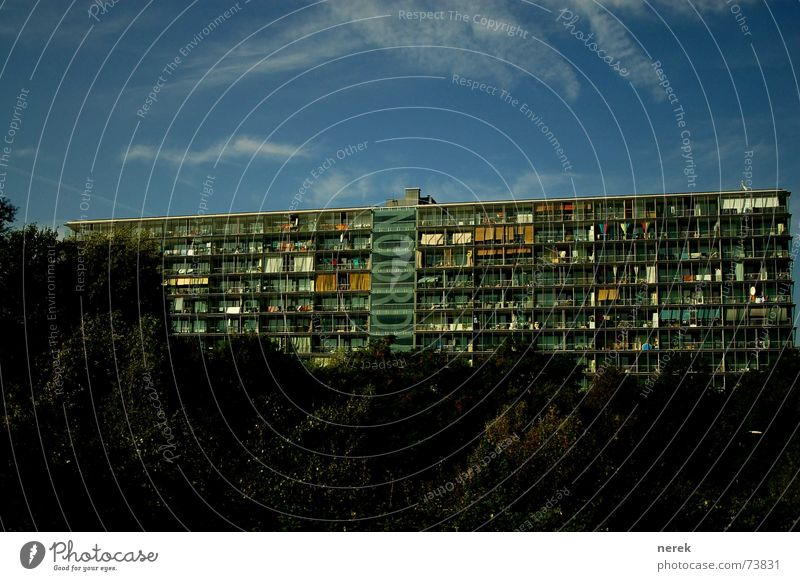 modernes Wohnen Häusliches Leben Plattenbau Amsterdam Gewächshaus