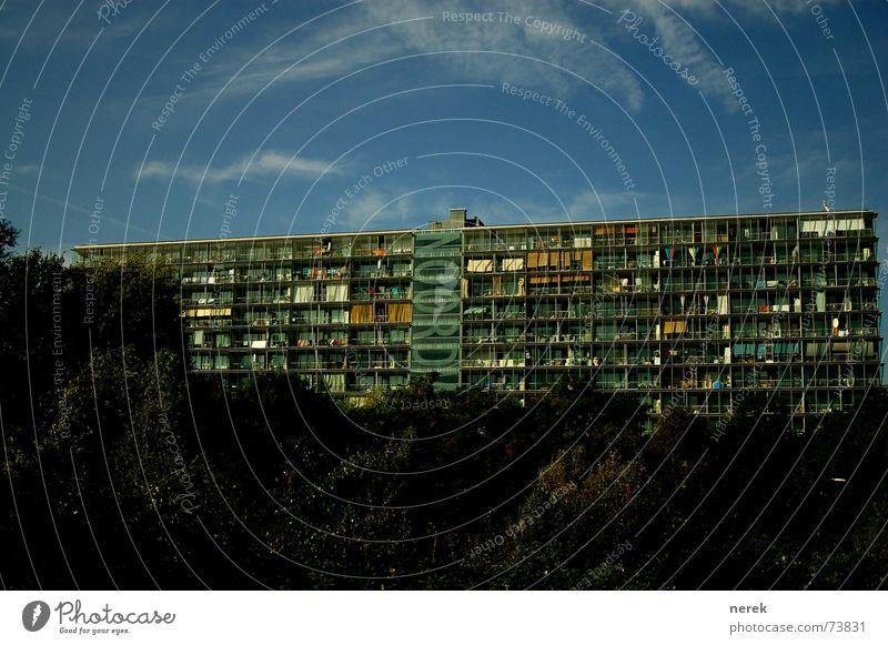 modernes Wohnen modern Häusliches Leben Plattenbau Amsterdam Gewächshaus
