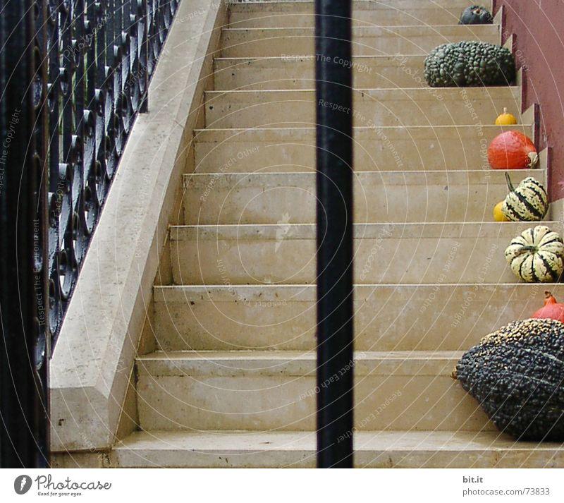 einsLINKS< >einsRECHTS Traurigkeit Herbst Gesundheit Kunst Stimmung oben 2 Treppe Ordnung Dekoration & Verzierung Idylle Ernährung hoch kaputt Jahreszeiten Geländer