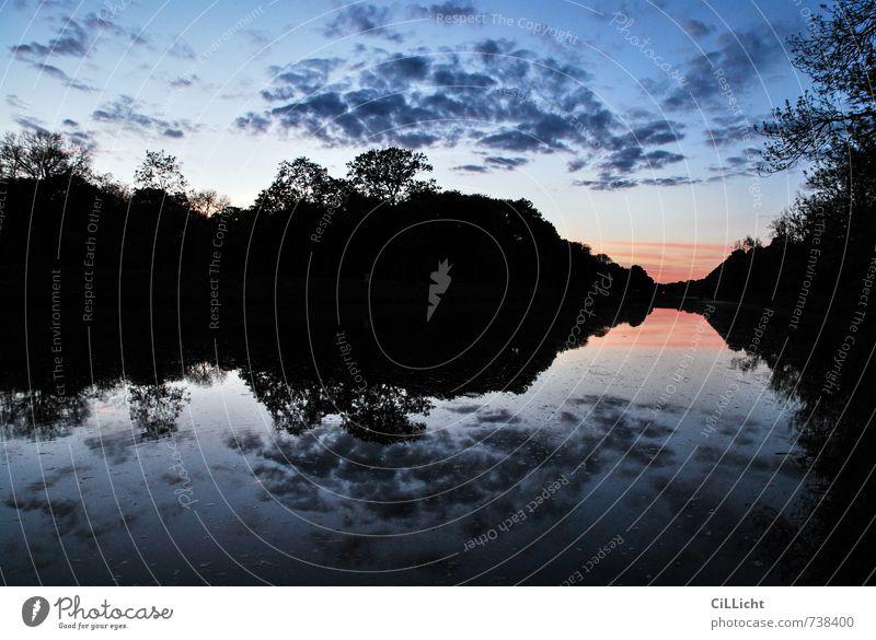 Leipziger Abende I Himmel Natur Ferien & Urlaub & Reisen Wasser Baum Einsamkeit Erholung Landschaft ruhig Wolken Ferne Umwelt Freiheit Stimmung Horizont