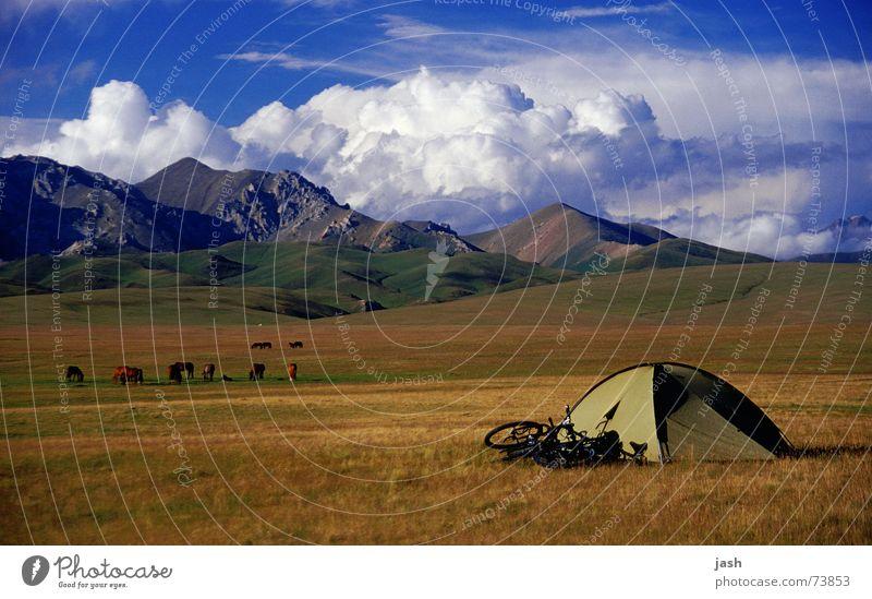 Zeltplatz am Song Kol (3000m, Kirgisien) grün Fahrrad braun Wiese gelb Wolken Kumulus Hochebene ruhig Außenaufnahme Berge u. Gebirge kuppelzelt Himmel Freiheit