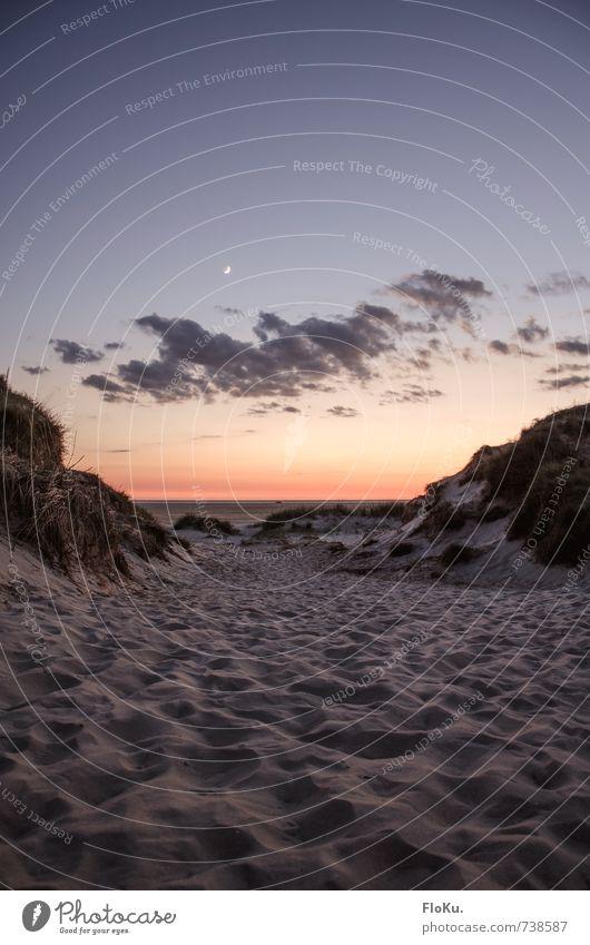 Gute Nacht, Nordsee Ferien & Urlaub & Reisen Tourismus Ausflug Abenteuer Ferne Freiheit Sommerurlaub Strand Meer Umwelt Natur Landschaft Sand Himmel Wolken