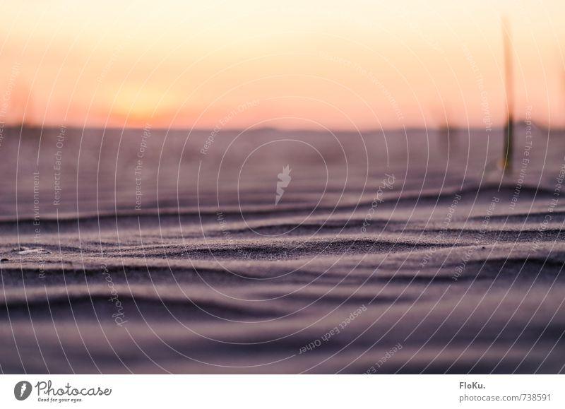 trockene Wogen Natur Ferien & Urlaub & Reisen Sommer Meer Erholung Ferne Strand Umwelt Küste Freiheit Sand Horizont Wetter orange Erde Wellen