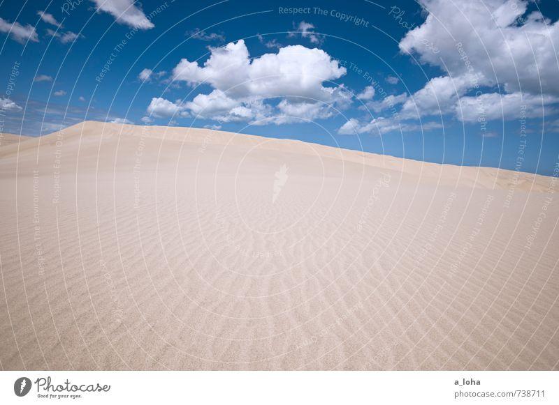 Sanddunes Natur Landschaft Urelemente Luft Himmel Wolken Sommer Klima Schönes Wetter Wärme Küste Strand Meer Linie Fernweh ästhetisch Einsamkeit rein
