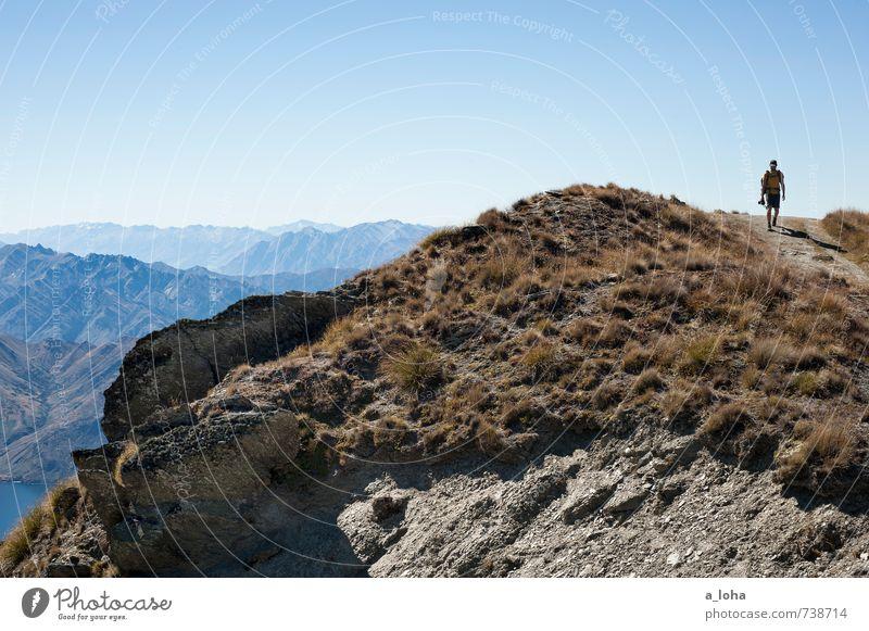 unterwegs Ausflug Abenteuer Ferne maskulin Mann Erwachsene Natur Landschaft Urelemente Erde Wolkenloser Himmel Herbst Klima Schönes Wetter Gras Felsen Alpen