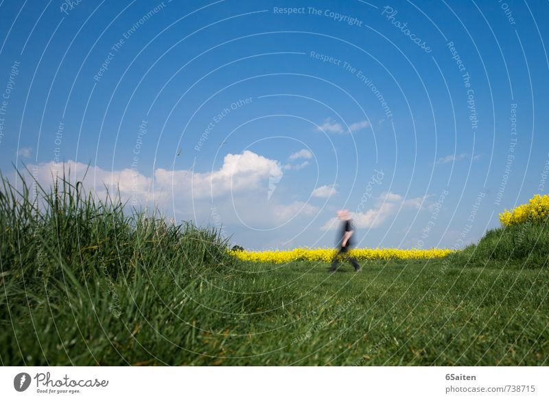 Eile oder Weile? Mensch Himmel Natur Mann Pflanze Sommer Sonne Erholung Landschaft Wolken Erwachsene Umwelt Leben Wiese Wege & Pfade Frühling