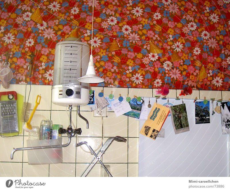 kitsch-kitchen Wasser Blume Freude Lampe hell Wildtier Fotografie Armut Fröhlichkeit retro Küche Kitsch Fliesen u. Kacheln Postkarte Momentaufnahme eng