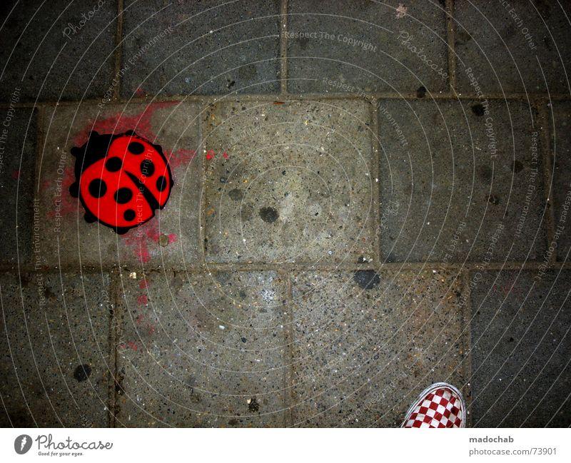 THIS IS 300 | marienkäfer urban city stadt ground schuh shoe weiß Stadt rot schwarz Straße grau Schuhe Bodenbelag Asphalt Quadrat Fußgänger Marienkäfer kariert Süßwaren Kaugummi Lieferwagen