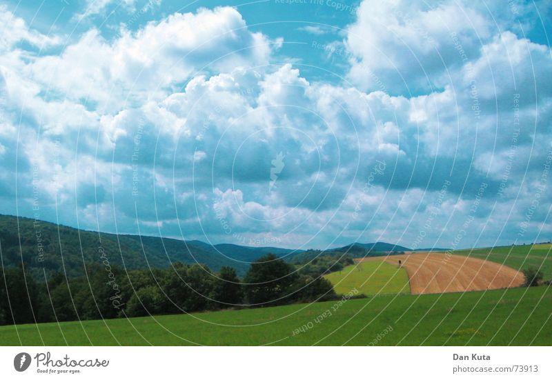 Wald Feld dir ein? Natur Himmel grün blau Wolken Wald Wiese Traurigkeit Landschaft Feld Horizont Rasen türkis Stoppel unheilvoll