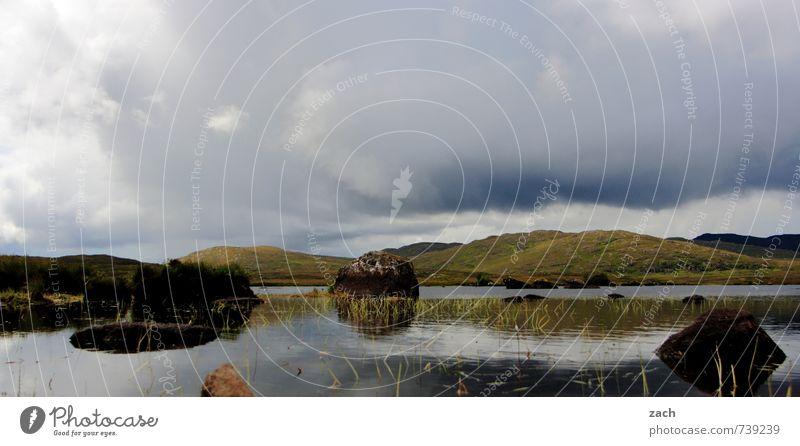 Connemara Natur Landschaft Himmel Wolken Frühling Sommer schlechtes Wetter Pflanze Gras Sträucher Moos Wiese Feld Hügel Seeufer Flussufer Moor Sumpf Stein braun