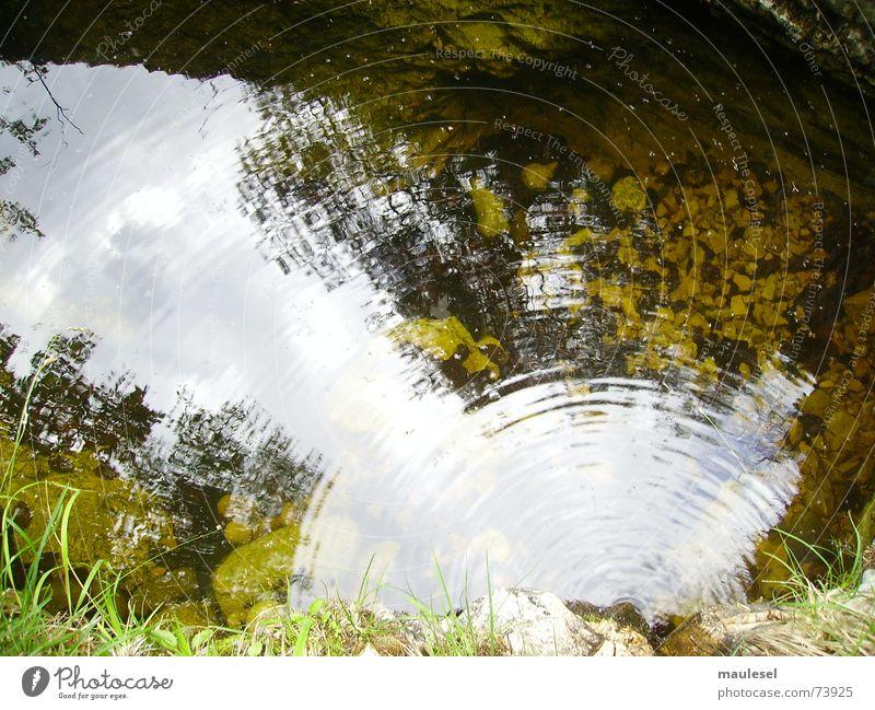positive vibes schwingen Bach Ethnologie Kaulquappe ruhig Herz-/Kreislauf-System Schwimmbad Umweltschutz Unendlichkeit Herbst Wasser Berge u. Gebirge Natur
