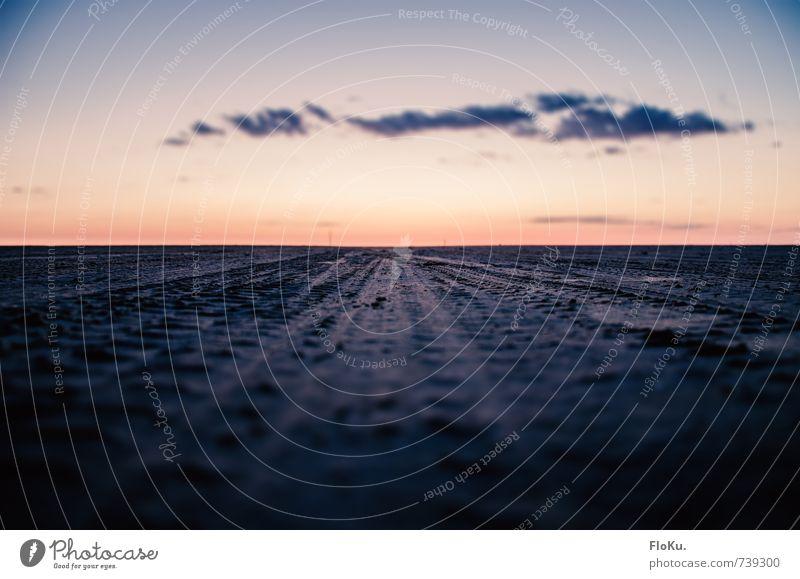 Dänische Weiten Ferien & Urlaub & Reisen Tourismus Ausflug Abenteuer Ferne Sommerurlaub Umwelt Natur Landschaft Erde Sand Küste Strand Nordsee Meer Wüste blau