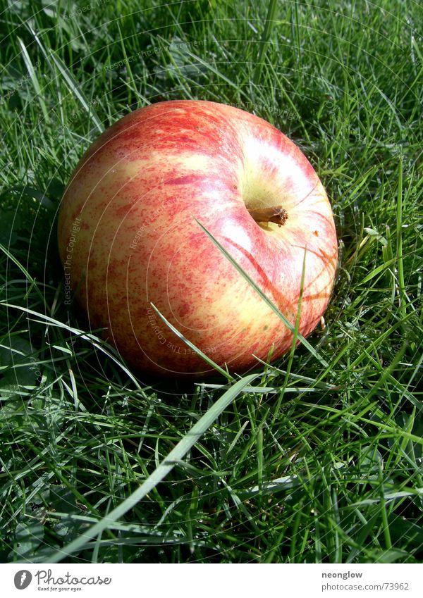 natural Tetra-Pack grün rot Herbst Gras Apfel lecker Vitamin Saft Frucht