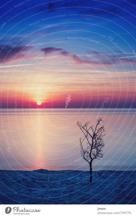 Schatten Himmel Natur blau weiß Wasser Baum Wolken Strand schwarz Horizont orange Idylle frei Schönes Wetter Unendlichkeit Ostsee