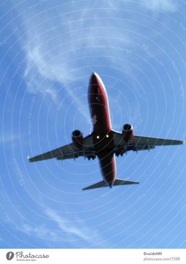 Abgehoben Flugzeug Wolken Luftverkehr Himmel Ferien & Urlaub & Reisen Flugzeuglandung Beginn Flughafen