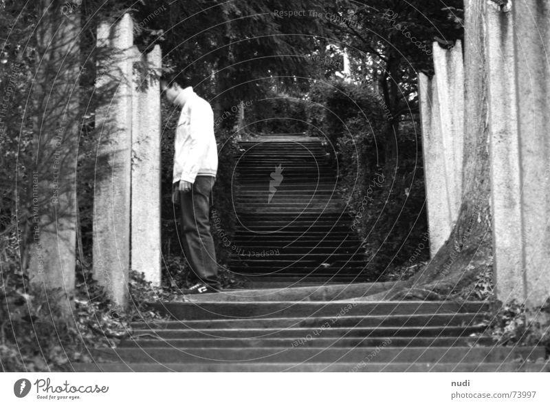 wenn hörts uf? Mann Wald Verzweiflung Unendlichkeit abwärts Jacke Hose ungewiss Fragen Einsamkeit schwarz weiß Treppe oben Haare & Frisuren Natur