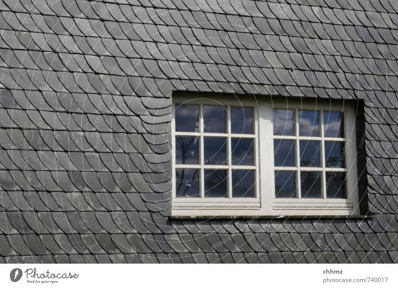 Schieferfenster Handwerk Baustelle Haus Mauer Wand Fenster Stein Holz Glas grau schwarz weiß Fassade Schieferverkeidung Dachgiebel Sprossenfenster Rechteck