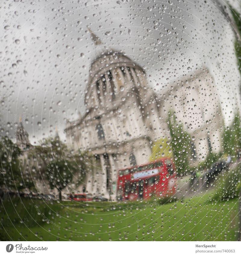 Frühling in London Himmel grün Pflanze Baum rot Wolken Gras grau außergewöhnlich Park Regen ästhetisch Wassertropfen Kugel Stadtzentrum Wahrzeichen