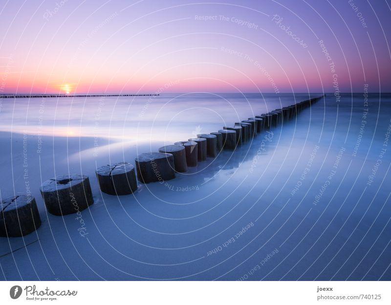 Tagesglück Ferne Freiheit Sommerurlaub Strand Insel Natur Wolkenloser Himmel Sonne Sonnenaufgang Sonnenuntergang Schönes Wetter Unendlichkeit schön blau violett
