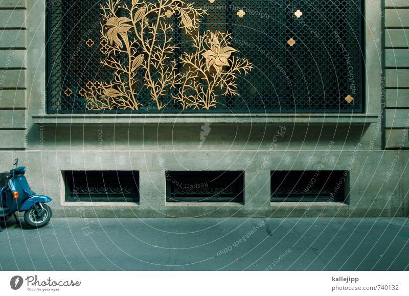 goldene zeiten Lifestyle elegant Stil Freizeit & Hobby Verkehr Fahrzeug Kleinmotorrad Blumenmuster Pflanze Abstellplatz Gitter Farbfoto Tag