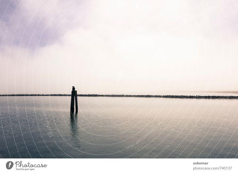 Weite Himmel Natur blau Wasser Meer Einsamkeit Landschaft ruhig Ferne Gefühle Küste grau Stimmung Horizont Zufriedenheit frei