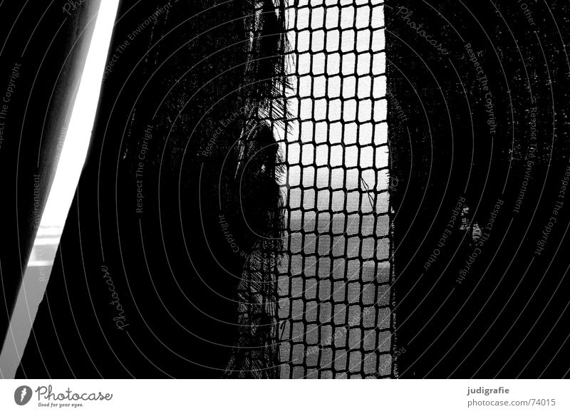 Durchsicht durchsichtig Maschendraht Textilien Stoff Sichtschutz Hannover kaputt Licht dunkel schwarz weiß verfallen Schwarzweißfoto Aussicht Netz Schutz