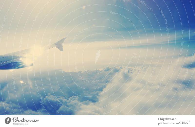 Ich flieg auf Dich! Ferien & Urlaub & Reisen Tourismus Ausflug Umwelt Himmel Wolken Sonne Sonnenlicht Klima Luftverkehr Flugzeug Passagierflugzeug Fluggerät