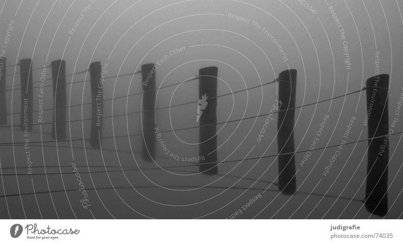 Morgennebel Fischland See aufgereiht Nebel ruhig Reflexion & Spiegelung grau trist Vorpommersche Boddenlandschaft Zingst Darß Hafen Langzeitbelichtung Herbst