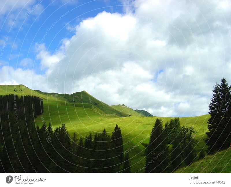 Bergwelt Himmel Baum Sonne grün Wolken Ferne Berge u. Gebirge wandern gehen Spaziergang Idylle Hügel ziehen