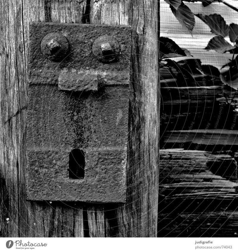 Oh! erstaunt erschrecken Schrecken Holz Befestigung Gleise Pflanze schwarz weiß oh Gesicht Gesichtsausdruck staunen Schraube vierkant Auge Nase Mund schwelle