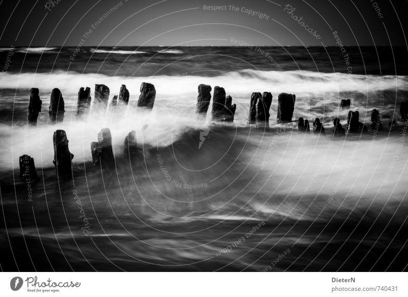 Wildwasser weiß Wasser Meer Landschaft Strand schwarz Frühling grau Horizont Wellen Wind Ostsee Sturm Mecklenburg-Vorpommern Buhne Kühlungsborn