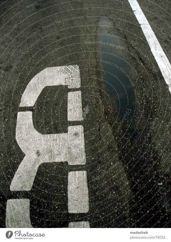 BODEN | urban typo boden markierung verkehr traffic busstop Straße grau Linie Schilder & Markierungen Verkehr außergewöhnlich trist Bodenbelag Buchstaben Asphalt Typographie Pfütze verkehrt Bushaltestelle