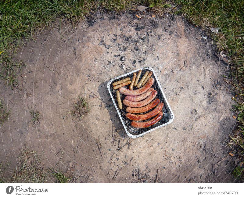 Romantisches Picknick im Grünen Lebensmittel Fleisch Wurstwaren Ernährung Essen Natur Erde Frühling Sommer Rasen Feuerstelle Wiese Grill lecker Grillkohle