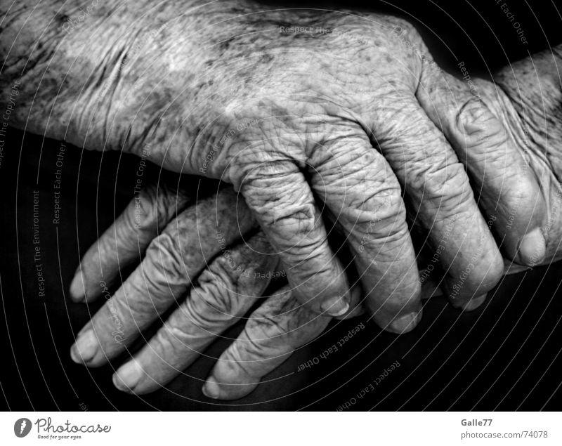Spuren des Lebens Hand alt Gefühle Wärme Zeit Finger festhalten Falte Geborgenheit Halt sensibel verwundbar