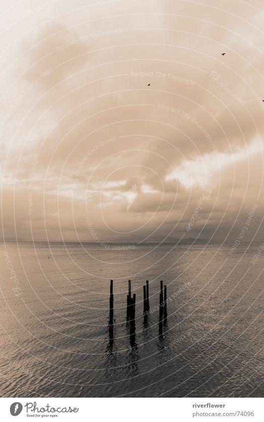 Fjordsymbiose six Natur Wasser Himmel Meer Wolken Einsamkeit Norwegen Sepia Fjord Trondheim