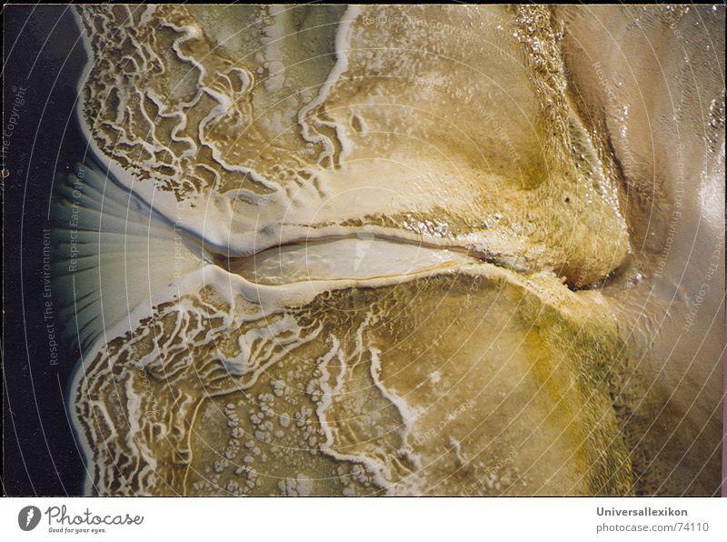 Kalkgebilde  an versteinertem Wasserfall/Oaxaca/Mexico-1 Wasser Erde Fluss Stein Weltall Wasserfall Mexiko Strömung Kalk Ocker