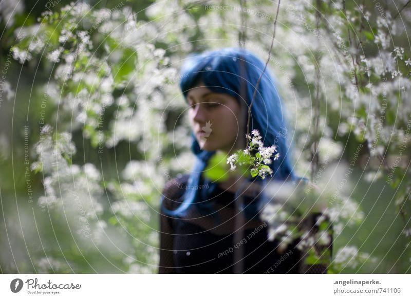 seht teresa XI Baum Blüte Perücke Schwache Tiefenschärfe Unschärfe verträumt Mädchen