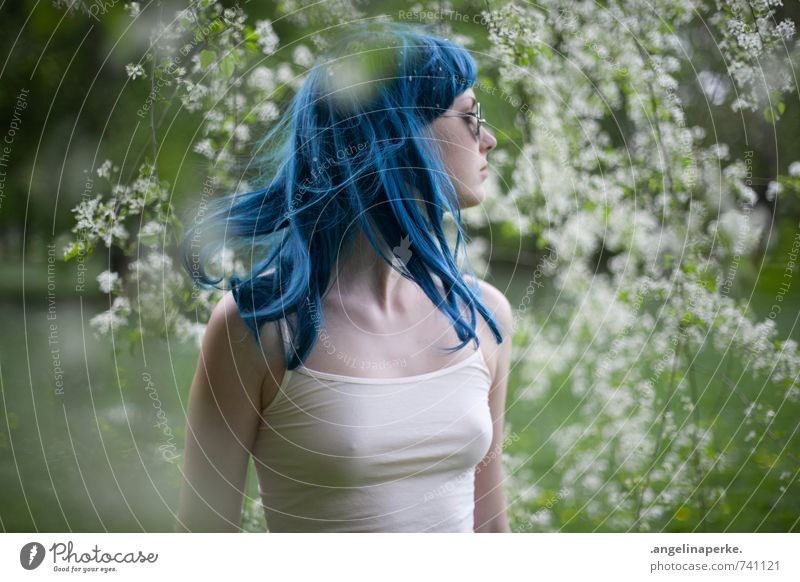 teresa blaues haar Frau Natur Sommer Sonne Blüte Frauenbrust Perücke