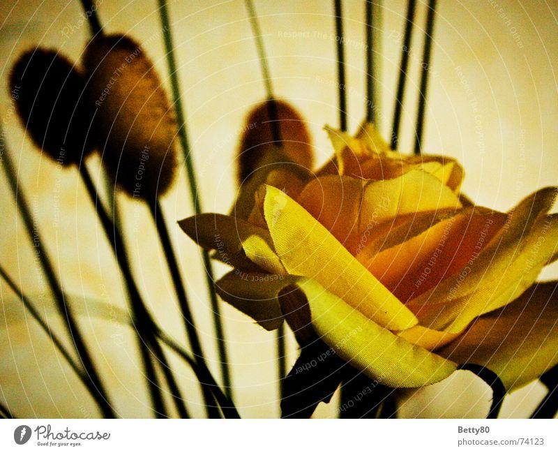 Original oder Fälschung Blume gelb Rose falsch gestellt Kunstblume Stoffblüten