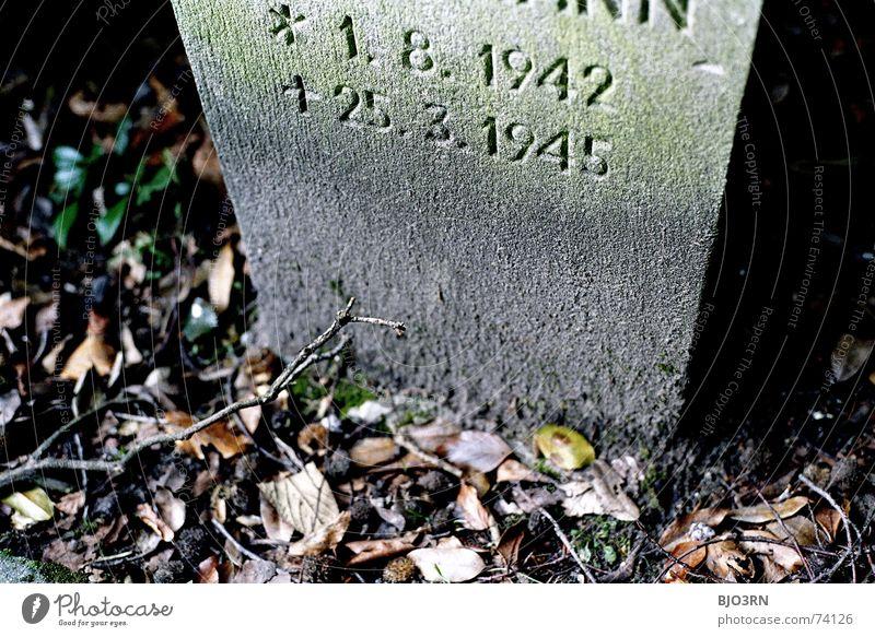 traurig aber wahr... Trauer Grab Weltkrieg 2. Weltkrieg Krieg Friedhof erinnern 1945 Blatt Herbst analog Querformat Oktober Grabmal Stimmung Aufschrift Kultur